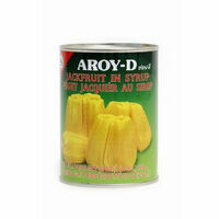 fruits jacquier 565gr aroyd
