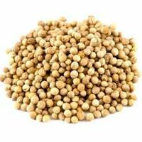 coriandre  grains 50 gr