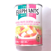 cocktail de fruits 560gr elephants