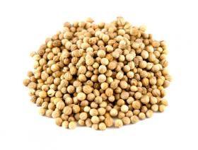 coriandre  grains entiers 50 gr